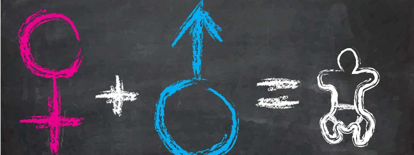 edukacja seksualna, seks