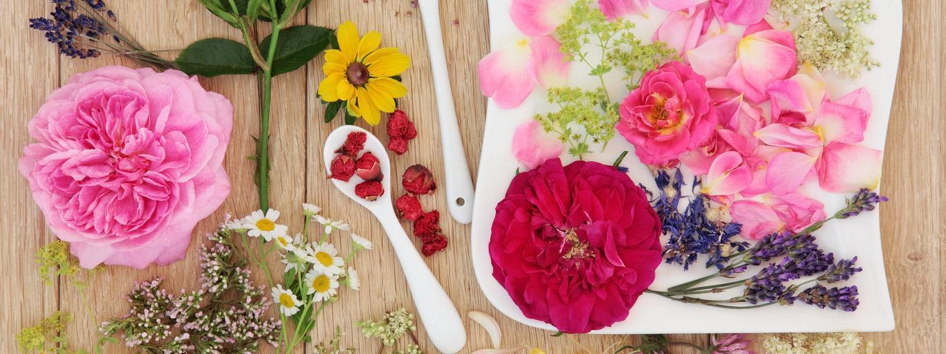 kwiaty na talerzu kwiaty jadalne