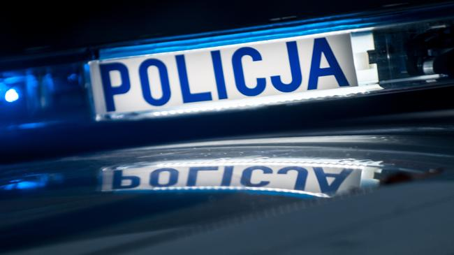 Ilustracja Policja