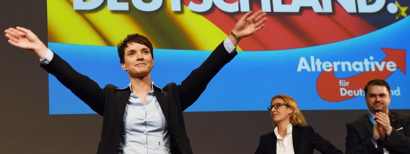 alternatywa dla niemiec, Frauke Petryy