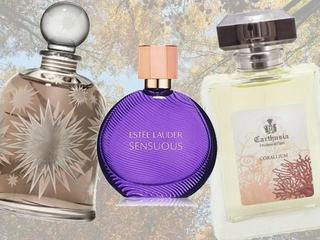 Perfumy o zapachu książki dostępne w Polsce