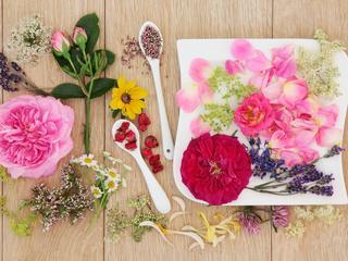 Dobieramy kwiaty doniczkowe