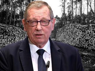 Szyszko ani myśli przerwać wycinki Puszczy. W odpowiedzi do Trybunału UE grozi stratami