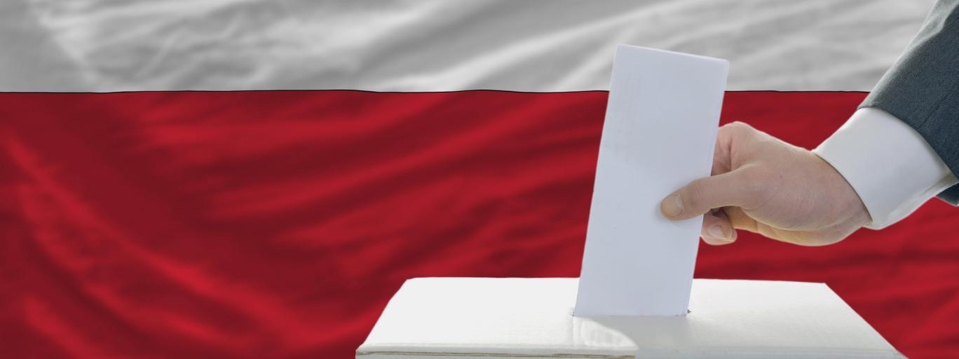 flaga, wybory, polska, głosowanie
