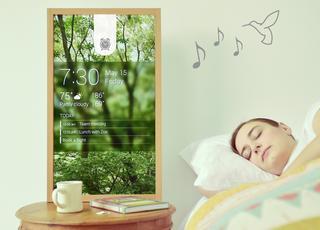 Techno-dom