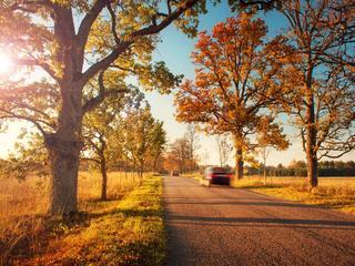 Najpiękniejsze europejskie miasta jesienią
