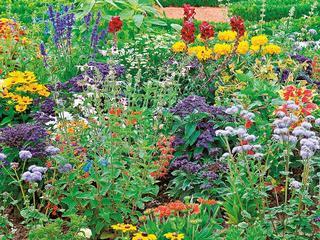 Jak zadbać o ogród na wiosnę?