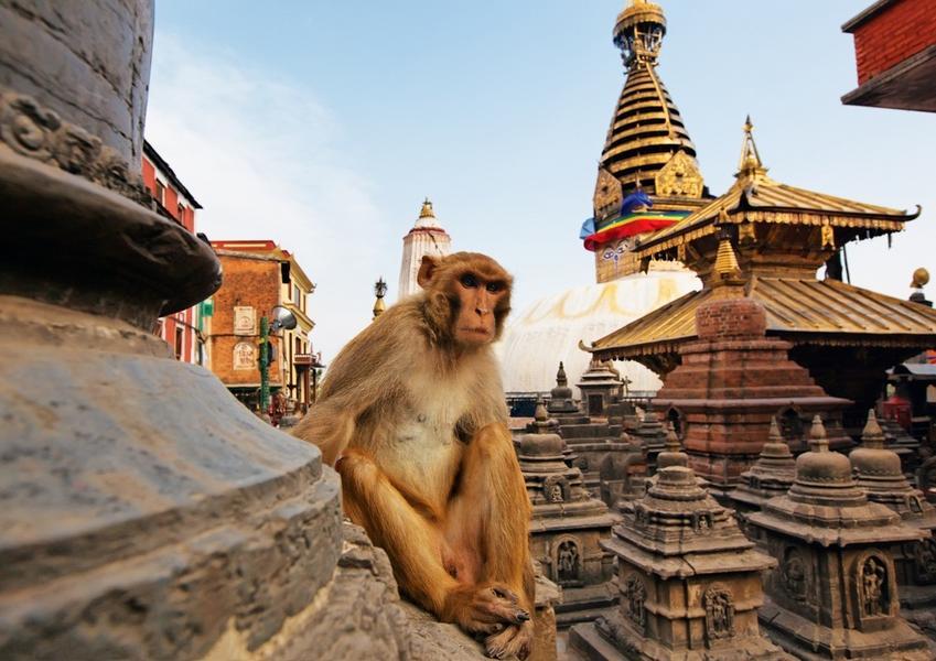 Azja podróże turystyka