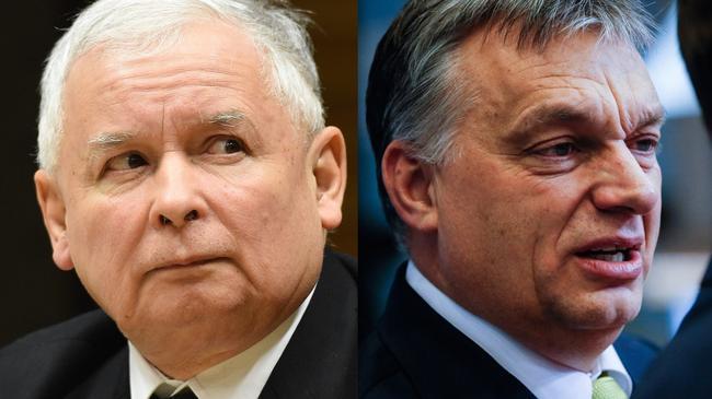 kolaż Kaczyński Orban