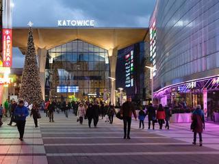 Katowice nie chcą Marii i Lecha Kaczyńskich. Wolą komunistycznego pisarza