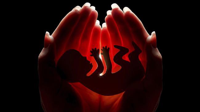 aborcja płód