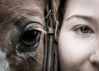 Empatyczny jak koń