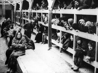 Czy wspomnienia kobiet z Auschwitz różnią się od wspomnień mężczyzn?