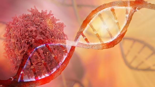 Model nici DNA z komórką rakową