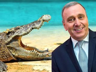 Schetyny strategia krokodyla