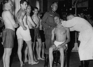 Ćpuny Hitlera