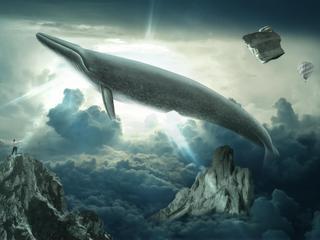 Niebieski wieloryb sieje śmierć. PS. to prawda!