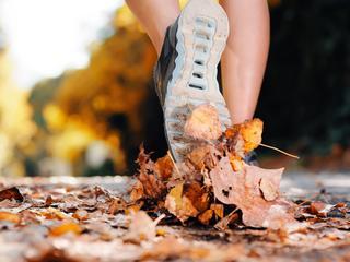Jesienny trening, czyli jak odpowiednio dobrać strój sportowy na chłodne dni?