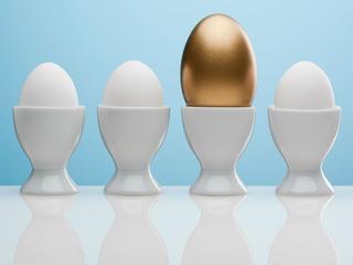 Jaja na emigracji. Dlaczego po raz pierwszy od czasów PRL-u w wielu sklepach zabrakło jajek?