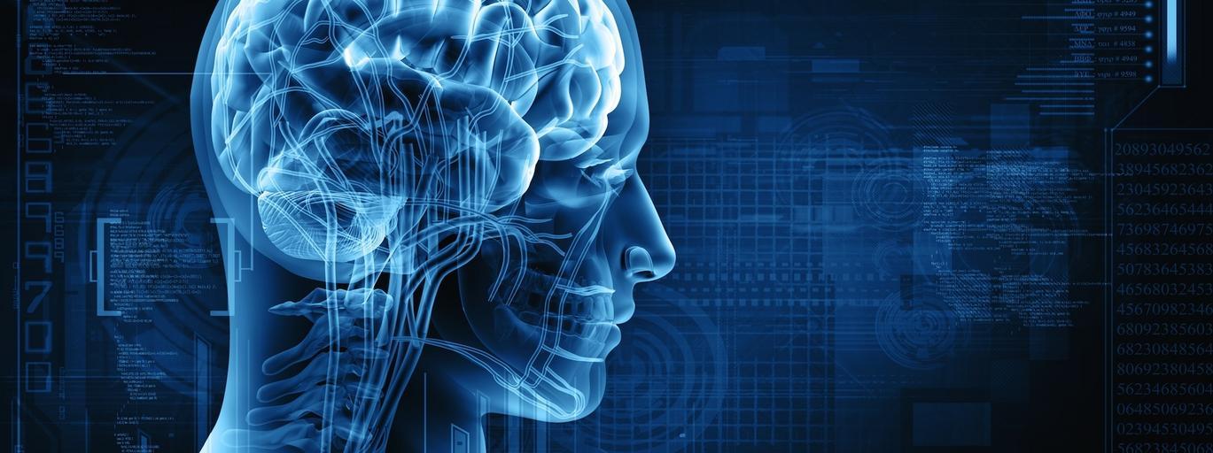 Mózg podzielność uwagi badania