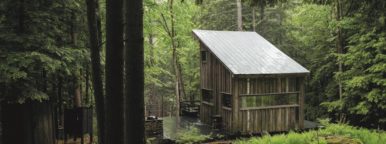 Amerykanie zwariowali na punkcie tych leśnych domków. Czy słusznie?