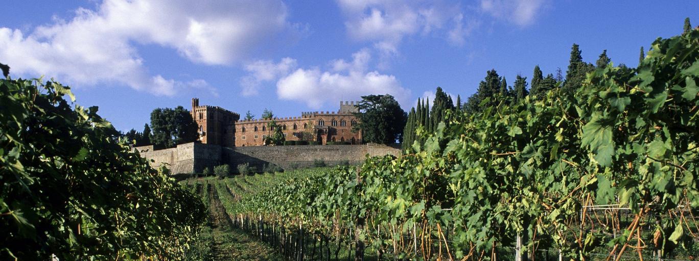 italy, tuscany, gaiole in chianti, broglio castle