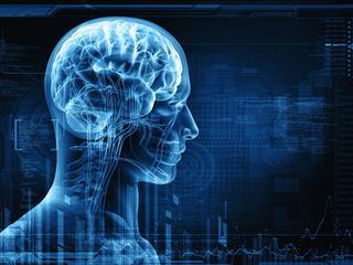 W zdrowym ciele zdrowy mózg
