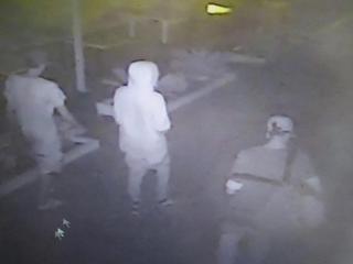 Tak wyglądają sprawcy napadu w Rimini: włoskie media publikują zdjęcia z monitoringu