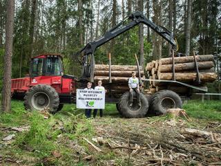 Puszcza walcząca. Ekolodzy blokują wycinkę Puszczy Białowieskiej przez PiS