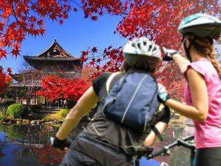 """""""To jest dziewicza podróż, jesteśmy my i droga"""". Polki przemierzyły Japonię na rowerach"""