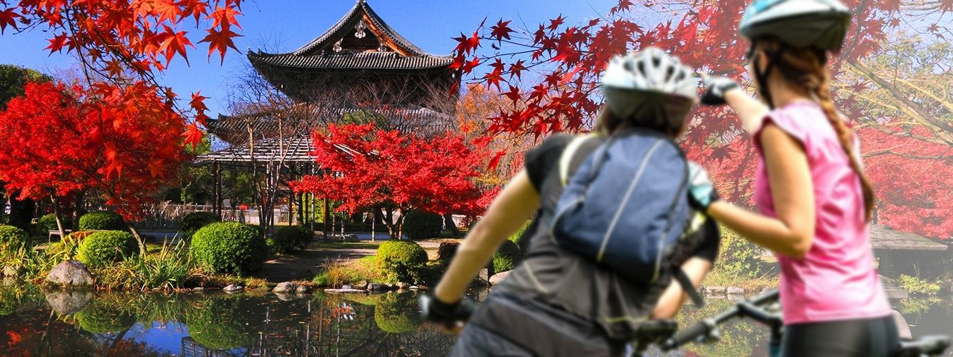 Japonia rowery