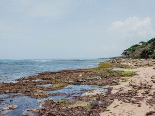 Dominikana: najbardziej przereklamowana wyspa Karaibów?