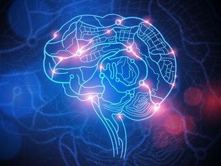 Naukowcy pomylili się co do mózgu. Niezwykłe odkrycie