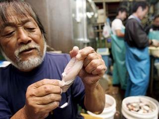 Śmiertelnie trująca ryba przez pomyłkę trafiła do japońskich supermarketów