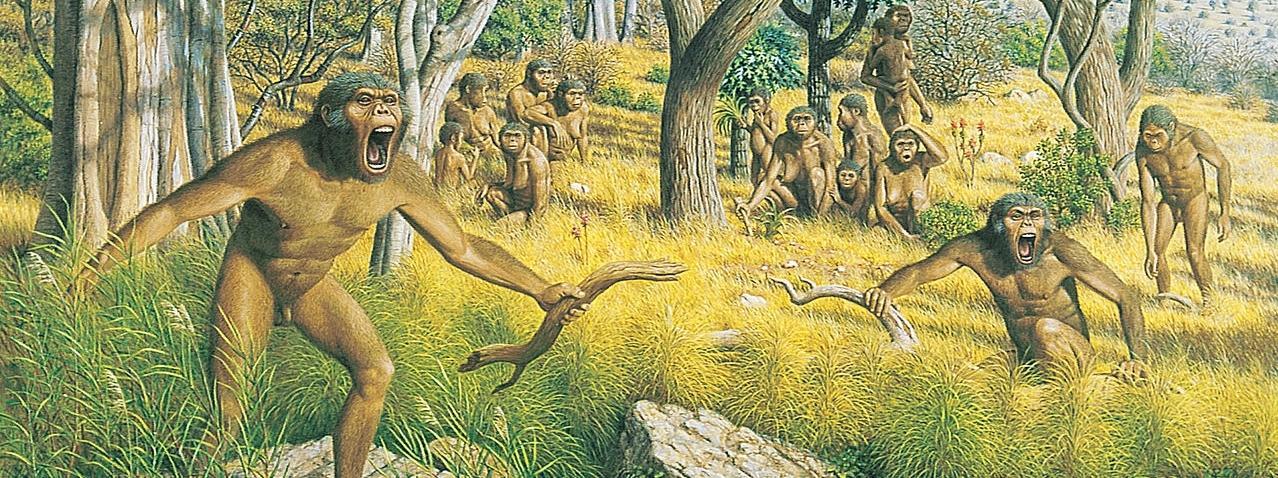 Australopiteki