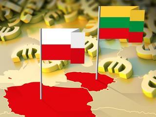 Drogi przyjaciel. Dlaczego Litwa tak nagle polubiła Polskę?