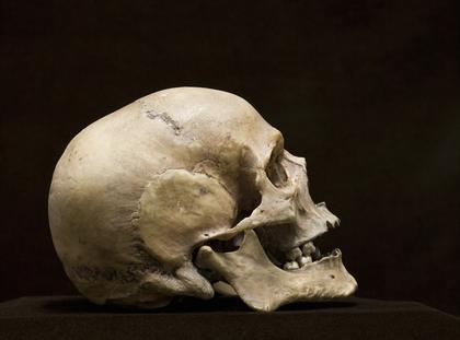 Czaszka szkielet śmierć
