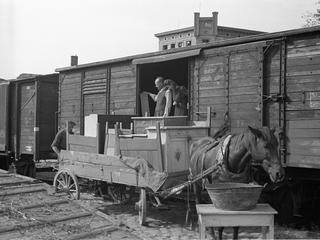 Awanturnicy i osadnicy. Jak po wojnie Polacy podbijali ziemie zachodnie