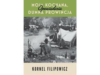 Pisarz prowincjonalny