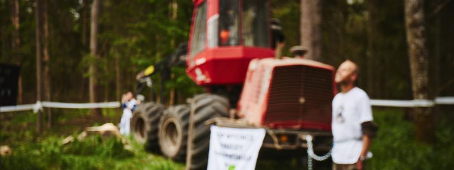 Obrona Puszczy Białowieskiej przez Greenpeace. fot. Greenpeace