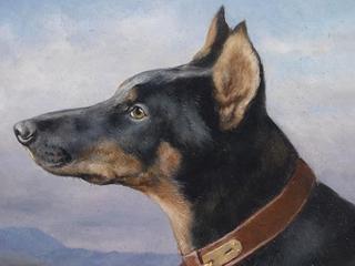 Komisarz Prinz. Dlaczego komuniści ocenzurowali pierwszego w historii Polski psa-tropiciela?