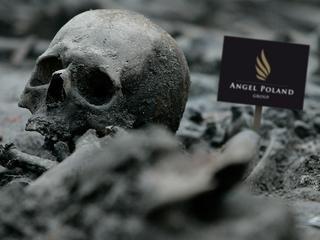 Nie wiadomo, co się stało z tysiącem szkieletów pod Wawelem