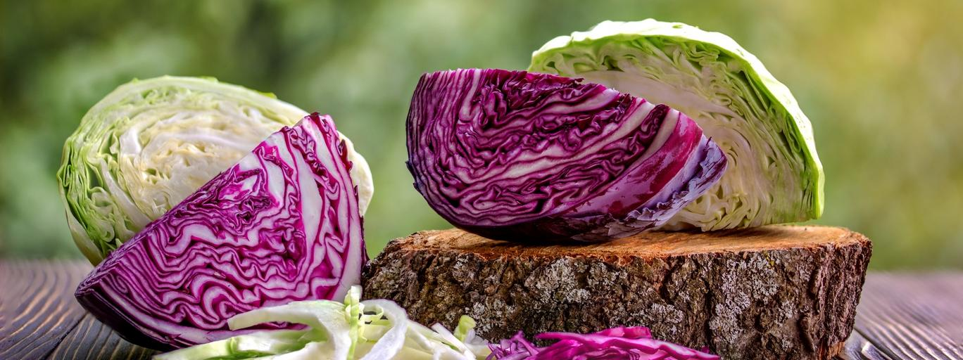 white and red cabbage and chopped white and red cabbage
