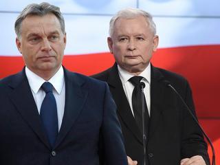 """""""Sztandar wolności trzymamy wysoko"""", czyli jak PiS cieszy się zwycięstwem Orbana"""