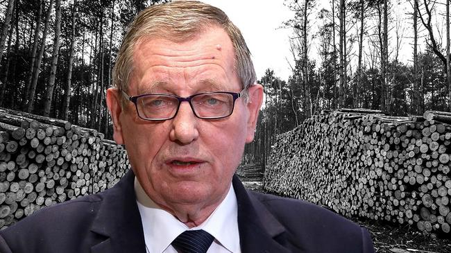 Jan Szyszko w lesie