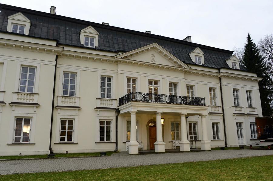 Palac w Radziejowicach, Radziejowice