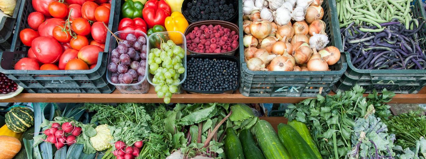 Warzywa jedzenie żywność