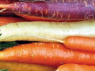 Ocalone od zapomnienia, czyli rzecz o warzywach