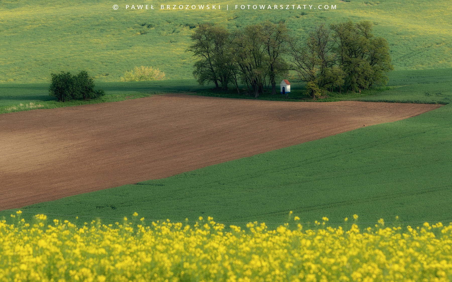 Faliste pola Moraw Południowych