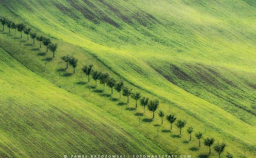 Faliste pola Moraw Południowych w Czechach